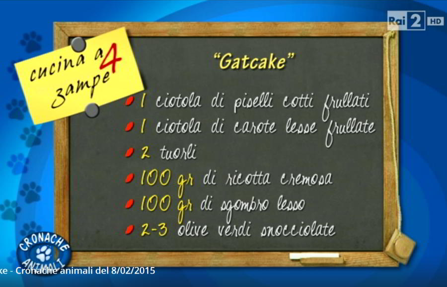 Gat Cake - Cronache animali